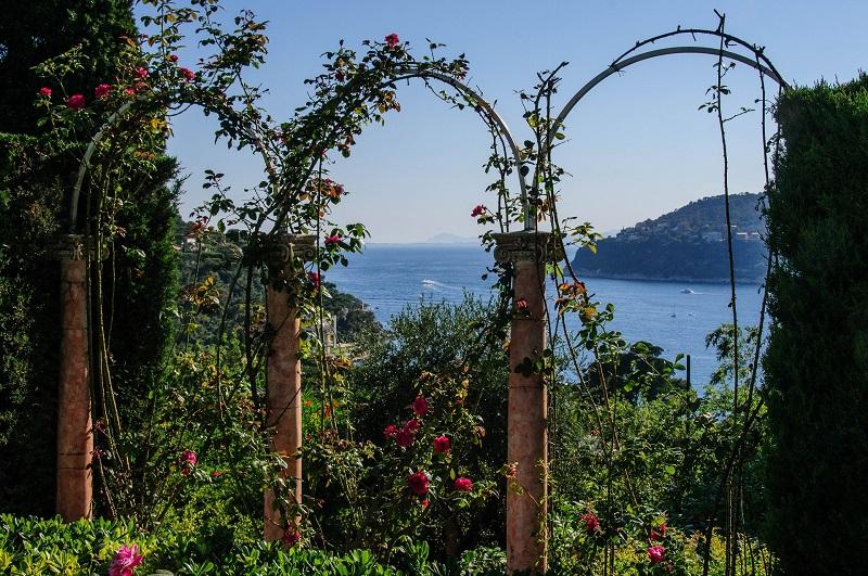 Ii Ii Rosenbogen Bepflanzen Aber Richtig Tipps Und Tricks
