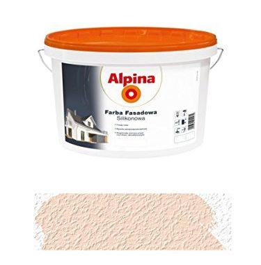 alpina-25-l-silikon-fassadenfarbe